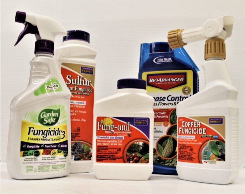 Fungus and Disease Controls for flowers, vegetables, shrubs, plants at Flowerland