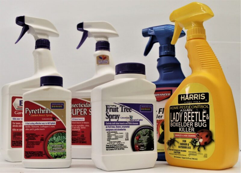 Insect bug controls for lawn and garden at Flowerland