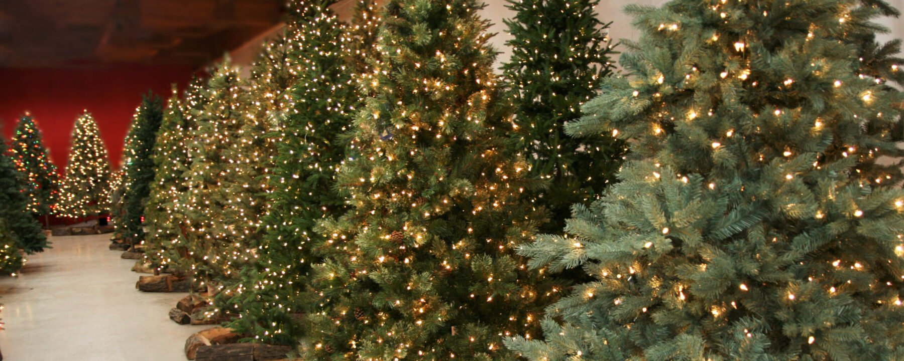 Flowerland has West Michigan's finest selection of Life Like Artificial Christmas Trees
