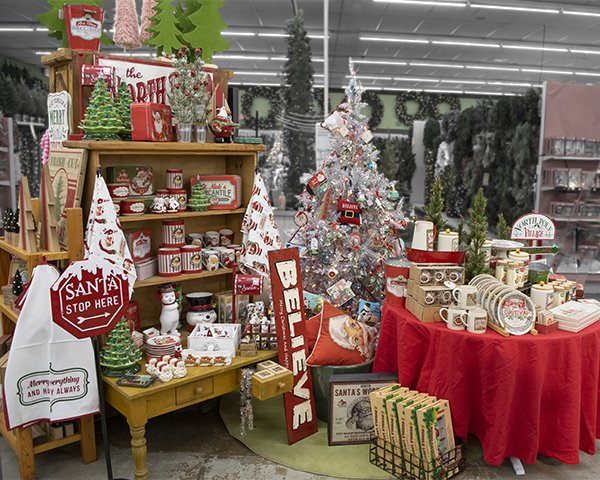 Beautifully decorated themed Christmas Trees at Flowerland