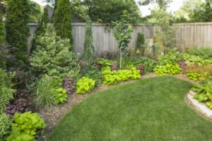 Landscape your yard! Photo courtesy of Proven Winners