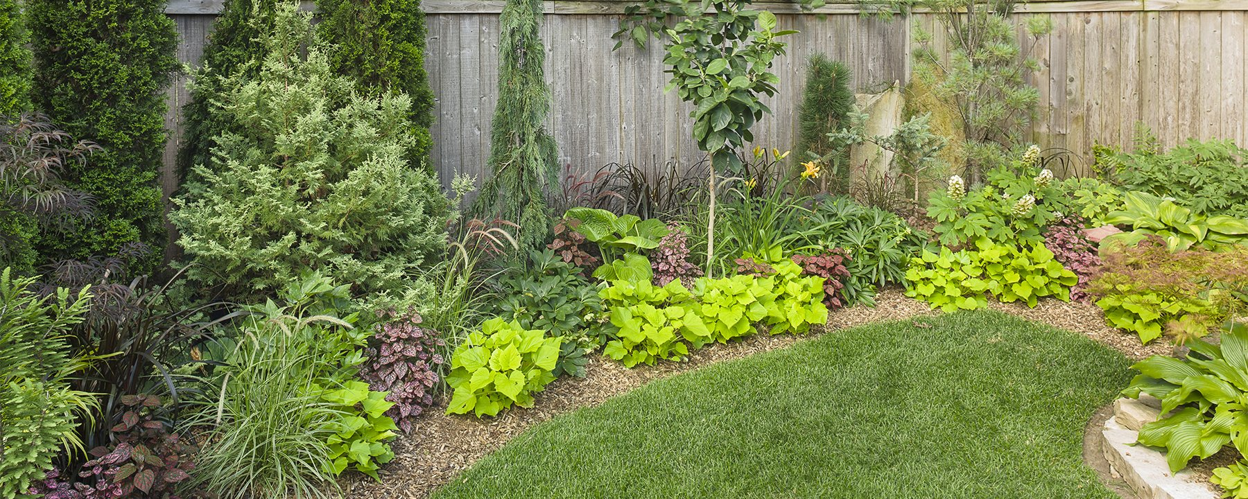 10 easy rules to a better home landscape design blog post