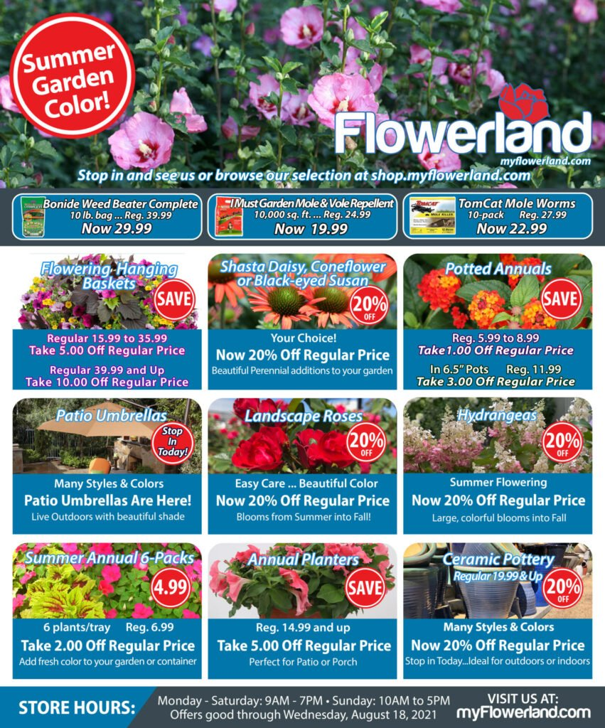 Flowerland Online Promotional Ad for August 12 2021