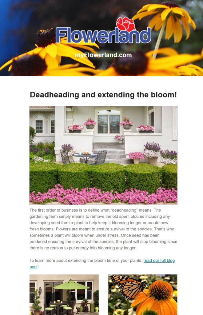Sign up for Flowerland's E-newsletter today!